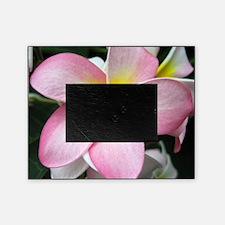 Plumeria Blossom Picture Frame