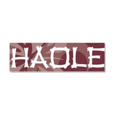 Haole21 Car Magnet 10 x 3