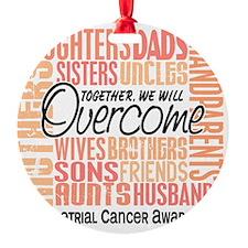 ENDOMETRIAL CANCER Ornament