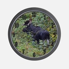 Bull in rut Wall Clock