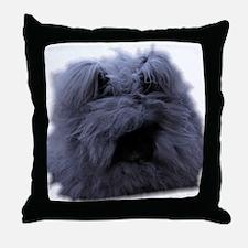 Bugattijpg Throw Pillow