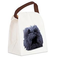 Bugattijpg Canvas Lunch Bag