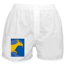 Kangaroo-iPhone4s Boxer Shorts