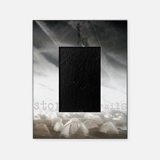 liberty chemtrails 2500Lt Picture Frame