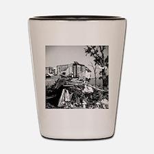 Joplin Aftermath Shot Glass