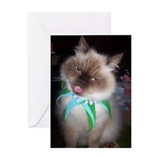 Funny faces Greeting Card