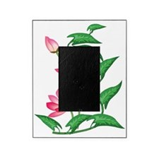 Lotus Flower Picture Frame