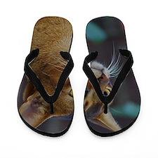 Abyssinian AA025D-018 Flip Flops