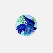 CalenderBig Blue Siamese Fighting Fish Mini Button