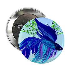 """Big Blue Siamese Fighting Fish_mpad 2.25"""" Button"""