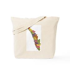 map of kerala Tote Bag