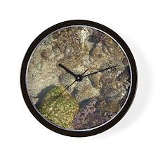 Tidepool Wall Clock