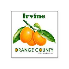 "irvine-design Square Sticker 3"" x 3"""