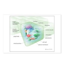 Plant Cell Postcards (Package of 8)