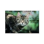 Valuable Pet Lesson #2 Rectangle Magnet (100 pack)