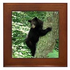 BearTree Framed Tile
