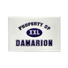 Property of damarion Rectangle Magnet