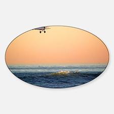 11-16-08-TP-bi-plane Decal