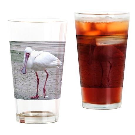 01-16-11-WAP-Spoonbill-turned head Drinking Glass