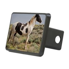 paint_square Hitch Cover