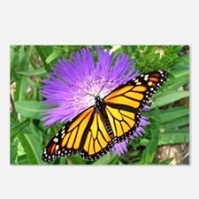 Monarch Buttefly Purple P Postcards (Package of 8)