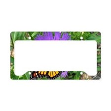 Monarch Buttefly Purple Pixie License Plate Holder