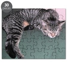Napping Cat Oil Puzzle