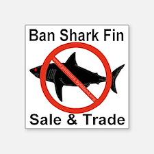 """no_shark_fin Square Sticker 3"""" x 3"""""""