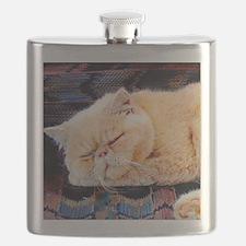 persian cat Flask