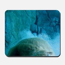 Polar_Bear_itouch Mousepad