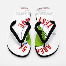 AREA-51_ Flip Flops