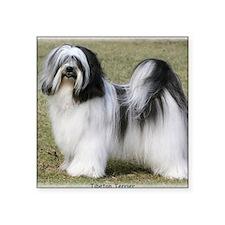 "Tibetan Terrier 9Y407D-232 Square Sticker 3"" x 3"""