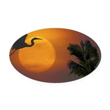 CT025 Oval Car Magnet