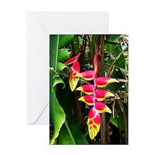 Costa_Rica_BOP_iPad Greeting Card