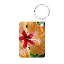 Costa_Rica_Hibiscus_iTouch Keychains