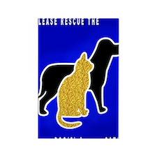 Cat  Dog Emergency Sticker blue Rectangle Magnet