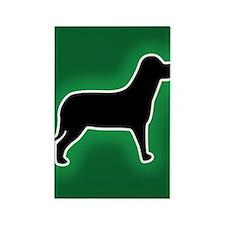 Dog Emergency Sticker Green Rectangle Magnet