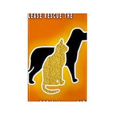 Cat  Dog Emergency Sticker Orange Rectangle Magnet