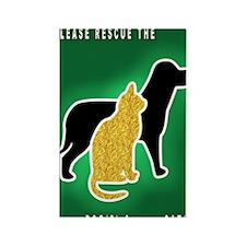 Cat  Dog Emergency Sticker Green Rectangle Magnet