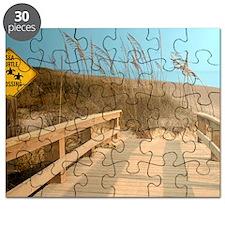 Turtle Crossing Puzzle