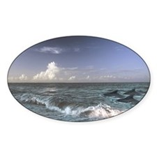 Dolphins In The Surf Decal