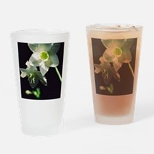 ipadcover Drinking Glass