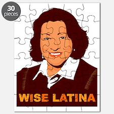Sotomayor Puzzle