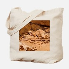 Kiva in Lower Grand Gulch Tote Bag