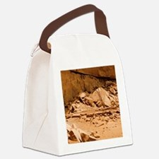 Kiva in Lower Grand Gulch Canvas Lunch Bag
