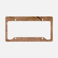Four Faces Pictograph License Plate Holder