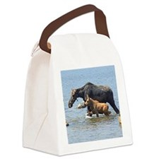 2.75x2 two Canvas Lunch Bag