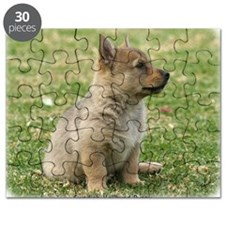 Swedish Vallhund Pup 9Y165D-131 Puzzle