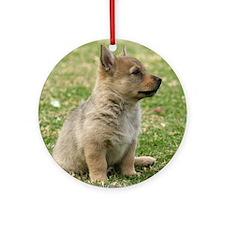 Swedish Vallhund Pup 9Y165D-131 Round Ornament