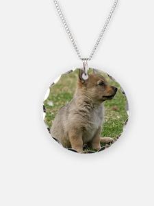 Swedish Vallhund Pup 9Y165D- Necklace